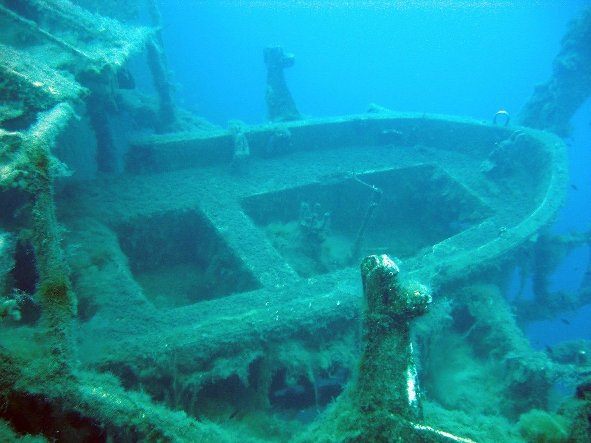 ABC Dive Cyprus UW 00023 - Diving & Cyprus Underwater World | ABC DIVE